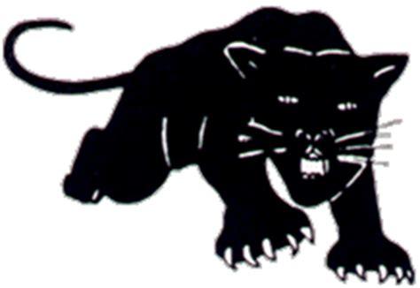 The black power movement This essay - History grade 12